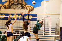 2015 WVHS Varsity Girls Volleyball vs Neuqua Valley-8