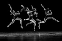 Orchesis - Black & White-3