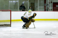 20170213 WV Hockey vs Decatur_001