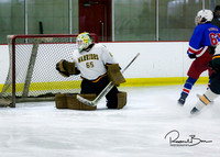 20170213 WV Hockey vs Decatur_004