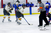 20170213 WV Hockey vs Decatur_005