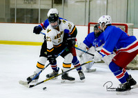 20170213 WV Hockey vs Decatur_007