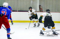 20170213 WV Hockey vs Decatur_020