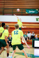 20190509 WV Men's Volleyball Senior Night-11