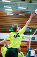 20190509 WV Men's Volleyball Senior Night-13
