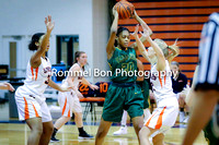 20180104 WV JV Girls Basketball at NN-03